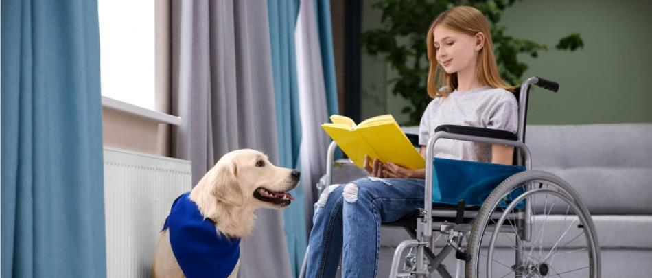 Pet Space Design + Animal Therapy = A Happy Youngster And A Cool Pet Pad