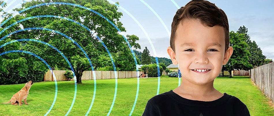 Treatment Techniques for Proper Auditory and Vestibular Function